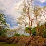 """Mayan Ruins-Belize"" by joegemignani"