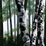 """White Birch"" by FradetFineArt"