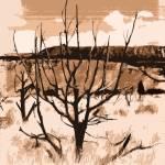 """""""Cedar Hill"""" by pierucciart"""