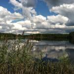 """Lakeside"" by NicolesFotos"