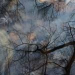 """autumn speaks in whispers"" by JulieScholz"