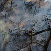 autumn speaks in whispers by julie scholz