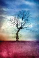 ATMOSPHERIC TREE