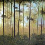 """""""Forest Harmony"""" by HerbDickinson"""