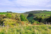 Looking Down into Lathkill Dale (21380-RDA)