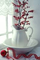 Pitcher with red berries