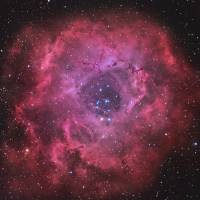 NGC 2244 Rosette Nebula Art Prints & Posters by Joe Renzetti