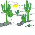 """""""Cacti"""" by jmeraz"""