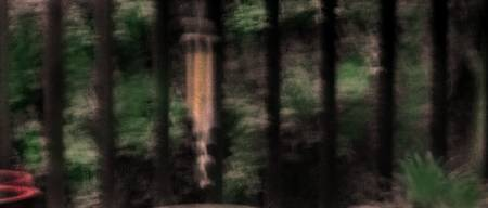 trees and wind chime hand colored photograph
