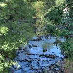 """Arroyo Creek"" by RichardAustin"