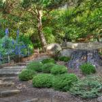 """Garden Path"" by RichardAustin"