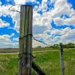 """Nebraska Fence Post"" by AboveTheGarageStudios"