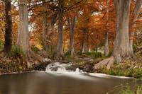 Texas Hill Country Autumn: Guadalupe River