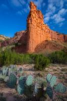 Caprock Canyon Wall