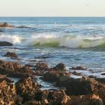 """Wave Action"" by oliverart"