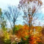 """Tall Autumn Trees"" by susansartgallery"