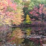 """Walden Pond 10-20-07"" by halobelle"