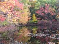 Walden Pond 10-20-07
