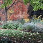 """""""Fall Garden 2"""" by FantaSeaArt"""