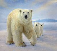 polar bear family variation
