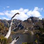 """Crater Lake, Cradle Mountain, Tasmania 002"" by dawncloudflower"