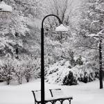 """Winter Light"" by LunarImage"