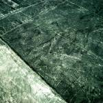 """The Nazca Lines"" by circlingtheglobe"
