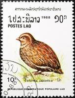Japanese Quail bird stamp.