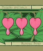 Three Bleeding Hearts