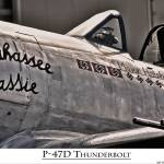 """P-47D Thunderbolt ""Tallahassee Lassie"""" by pursuitpux"