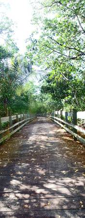 wooden bridge loiza pr 2