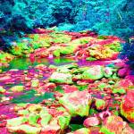 """Psychedelic Stream"" by podspics"