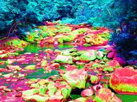 Psychedelic Stream