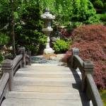 """Japanese Garden Bridge with Red Maple and Lantern"" by Marysvision"