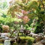 """Japanese Garden in Spring"" by Marysvision"