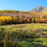 """Autumn in Utah"" by JosephPlotz"