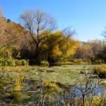 """Fall Pond"" by JosephPlotz"