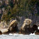 """The Rocky Shores Of The Kenai Fjords Peninsula"" by Lorraine_Sommer"