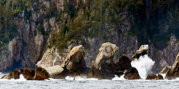 The Rocky Shores Of The Kenai Fjords Peninsula