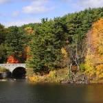 """""""Autumn Hillside"""" by LukeMoore"""