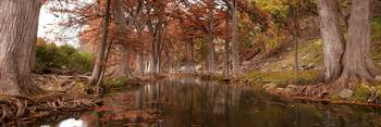 Guadalupe River: Texas Hill Country Panorama