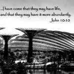 """Abundance, John 10:10, Garden by the Bay Singapore"" by sghomedeco"