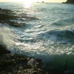 """Sunlight Splash"" by oliverart"