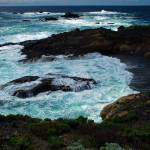 """Point Lobos Highlights"" by oliverart"