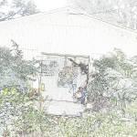 """""""Flowers Hut 001A PencilColour"""" by dawncloudflower"""