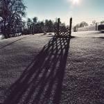 """""""Winter Garden"""" by photoww"""