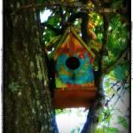 """""""Bird House"""" by mhoelzer2988"""