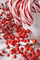 Candy Canes and Red Berries