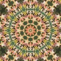 Leaves Memory Kaleidoscope 14