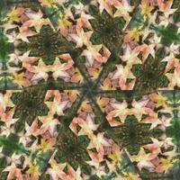 Leaves Memory Kaleidoscope 18
